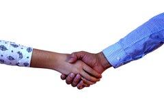 在白色背景的企业握手 库存照片