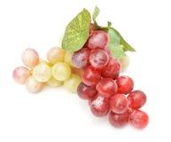 在白色背景的假葡萄 免版税库存照片