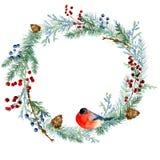 在白色背景的冬天水彩被绘的圣诞节花圈 皇族释放例证