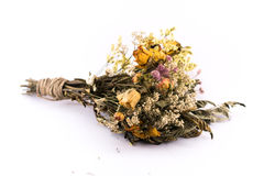 在白色背景的凋枯的花花束 免版税库存图片