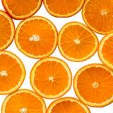 在白色背景的切的橙色桔子 库存图片