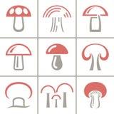 在白色背景的十九蘑菇汇集 向量例证