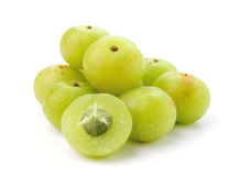 在白色背景的印地安鹅莓 免版税库存照片