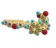 在白色背景的叶酸(维生素M,维生素B9)分子结构 免版税图库摄影