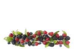 在白色背景的各种各样的新鲜的夏天莓果 顶视图 免版税库存图片