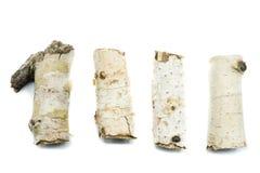 在白色背景的四个桦树分支片断孤立 库存照片