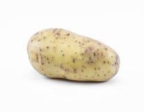 在白色背景的土豆-侧视图 库存照片