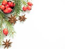 在白色背景的圣诞节装饰,莓果野玫瑰果,星,冷杉分支 复制空间 免版税库存图片