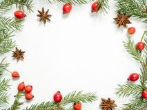 在白色背景的圣诞节装饰,莓果野玫瑰果,星,冷杉分支 复制空间 免版税图库摄影