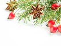 在白色背景的圣诞节装饰,莓果野玫瑰果,星,冷杉分支 复制空间 库存图片