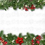 在白色背景的圣诞节边界与霍莉,冷杉木, vÃscum 免版税图库摄影