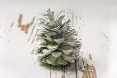 在白色背景的圣诞节锥体 免版税库存图片