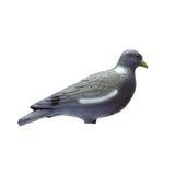 在白色背景的塑料鸽子诱饵孤立 免版税图库摄影