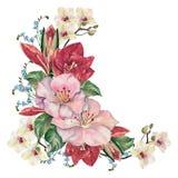 在白色背景的壁角水彩花 design illustration space 向量例证
