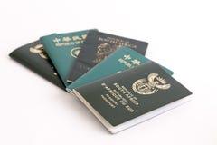 在白色背景的多本护照 库存图片