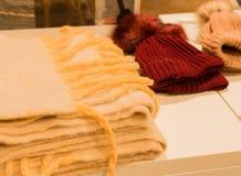在白色背景的安哥拉猫围巾 免版税库存图片
