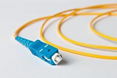 在白色背景的宏观光纤patchcord 免版税库存照片
