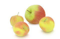在白色背景的小和大苹果 库存照片