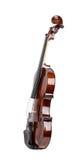 在白色背景的小提琴! 免版税图库摄影