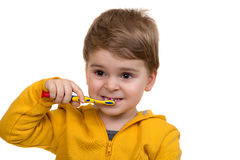 在白色背景的小男孩掠过的牙 免版税库存照片