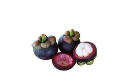 在白色背景的山竹果树果子 免版税库存图片