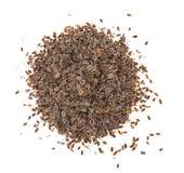 在白色背景的干干茴香籽 免版税库存照片