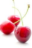 在白色背景的开胃甜樱桃 免版税库存图片