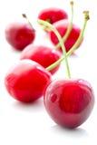 在白色背景的开胃甜樱桃 免版税图库摄影