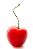 在白色背景的开胃甜樱桃 库存照片