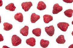 在白色背景的开胃莓莓果 库存图片