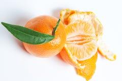在白色背景的成熟普通话柑橘蜜桔橘子 免版税库存照片