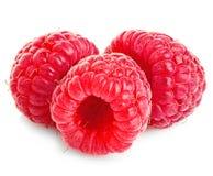 在白色背景的成熟莓特写镜头 免版税库存照片