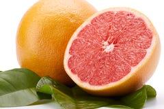 在白色背景的成熟葡萄柚 免版税图库摄影