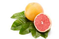 在白色背景的成熟葡萄柚 免版税库存照片
