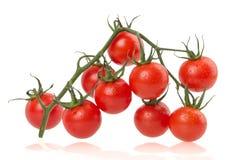 在白色背景的成熟蕃茄 图库摄影