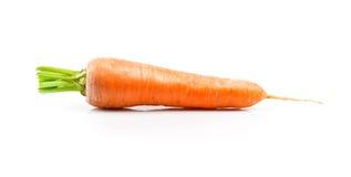 在白色背景的成熟水多的红萝卜 图库摄影