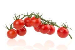 在白色背景的成熟tomatus 免版税库存图片