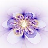 在白色背景的抽象发光的五颜六色的花 免版税库存照片