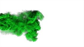 在白色背景的抽象绿色烟 库存图片