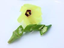 在白色背景的新秋葵果子和开花Abelmoschus esculentus秋葵切片 免版税库存照片