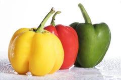在白色背景的新鲜的五颜六色的甜椒 库存图片