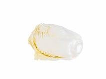 在白色背景的新鲜的大白菜 图库摄影