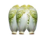 在白色背景的新鲜的大白菜 免版税图库摄影