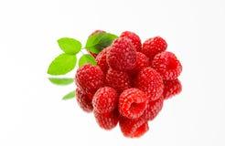 在白色背景的新鲜的有机成熟莓 免版税库存照片