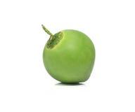 在白色背景的新鲜的椰子 免版税库存图片