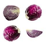 在白色背景的新鲜的红色紫色圆白菜菜 不同的照相机角度 库存照片