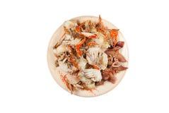 在白色背景的新鲜的美味的蒸的海鲜,被隔绝 免版税库存照片