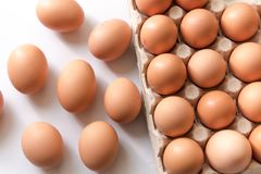 123/5000在白色背景的新鲜的鸡鸡蛋 库存图片