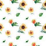 在白色背景的无缝的水彩样式 向日葵、叶子和狂放的草本 库存例证