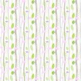 在白色背景的无缝的花卉样式 免版税库存照片
